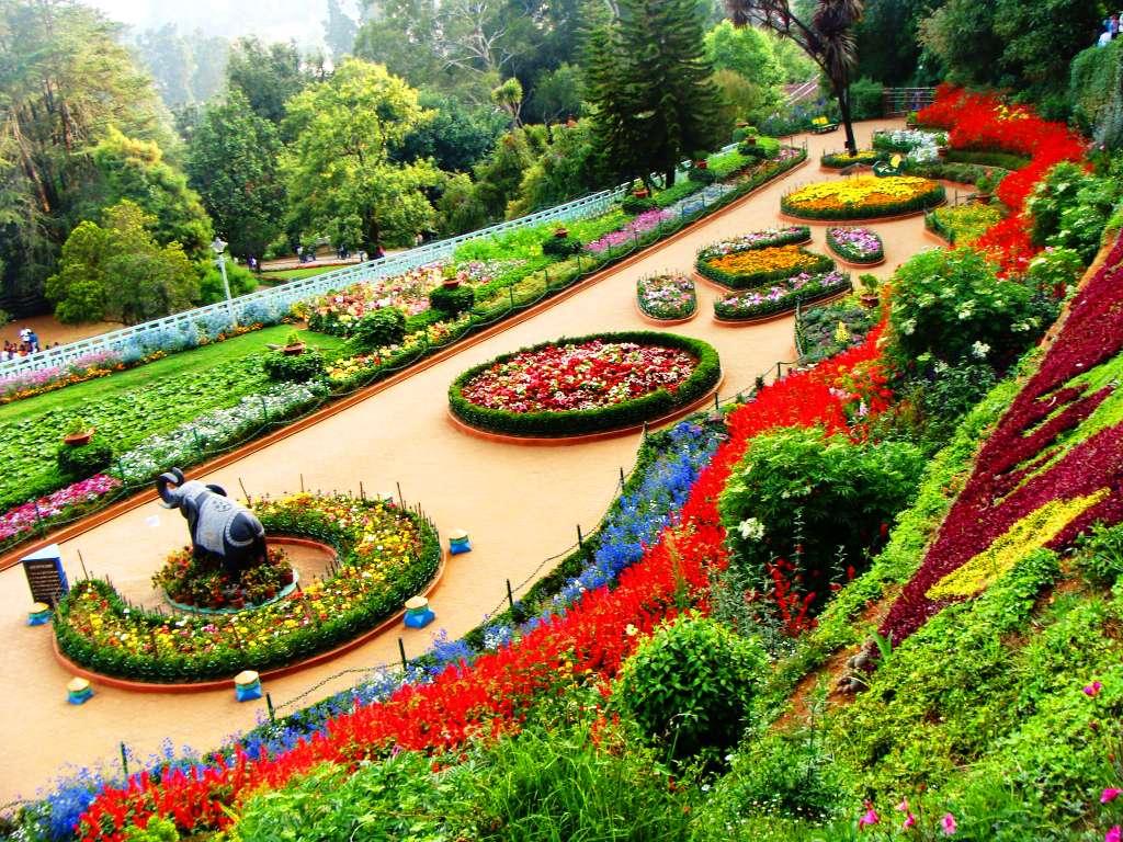 1486035674-Ooty-Rose-Garden.jpg
