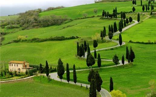 1486035674-beautiful-garden-on-the-way-ooty.jpg