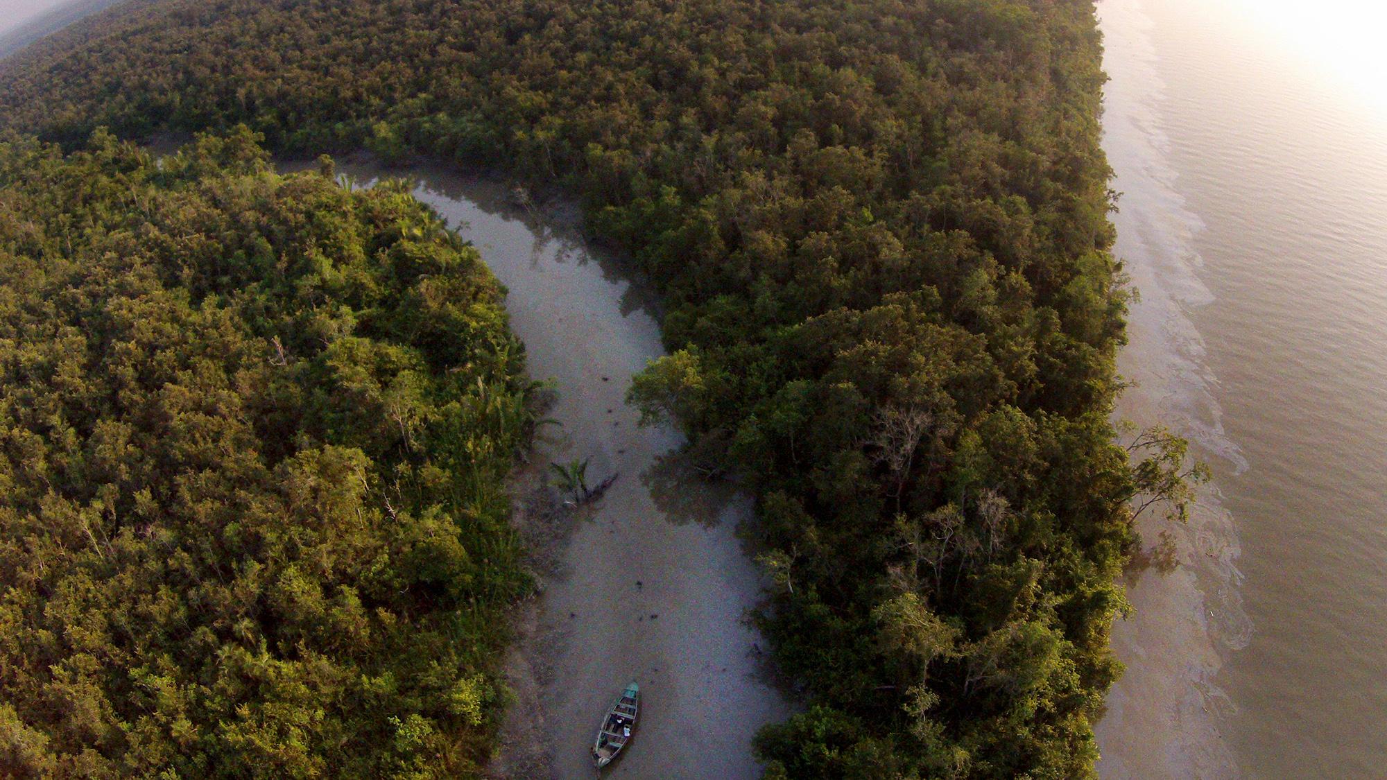 1486106581-sundarbans_oilspill_aerial.jpg