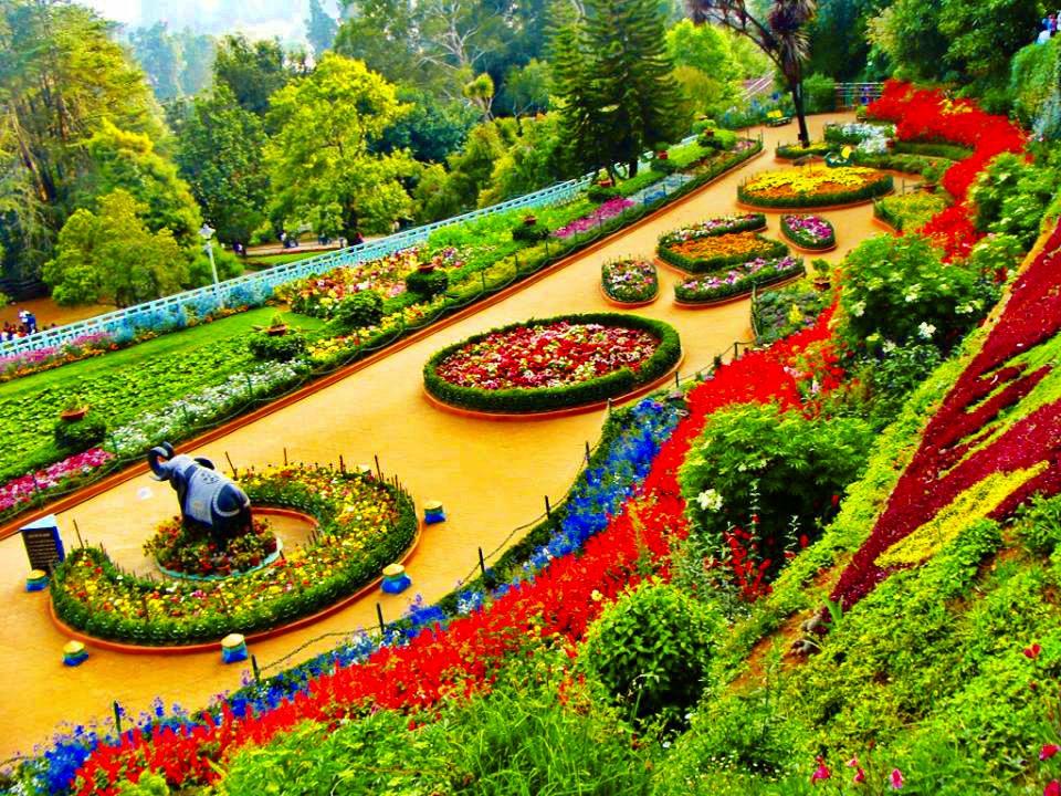 1486126967-Botanical-Garden-ooty.jpg