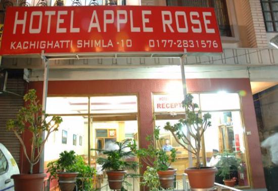 1486793097-Apple_Rose1.jpg