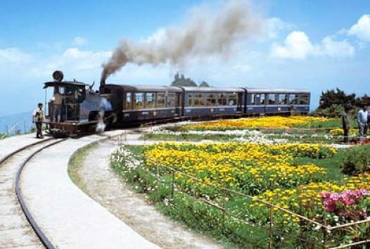1489144102-darjeeling-gangtok-tour-5454.jpg